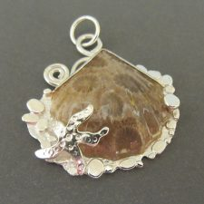 Petrified Coral Shell